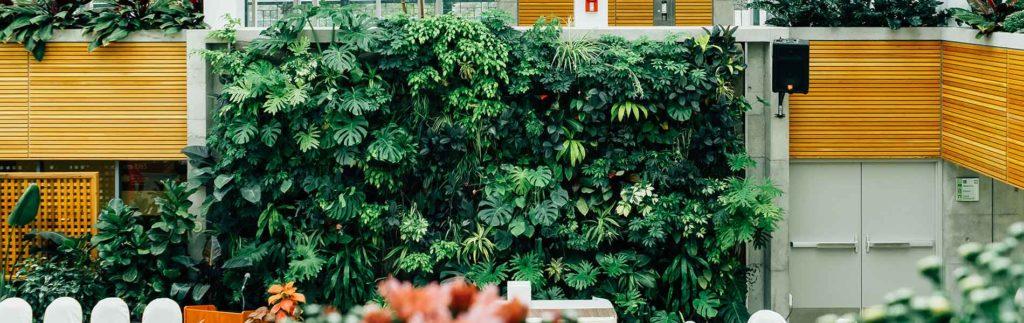 Entreprise-Paysage-Jardin-Var-83