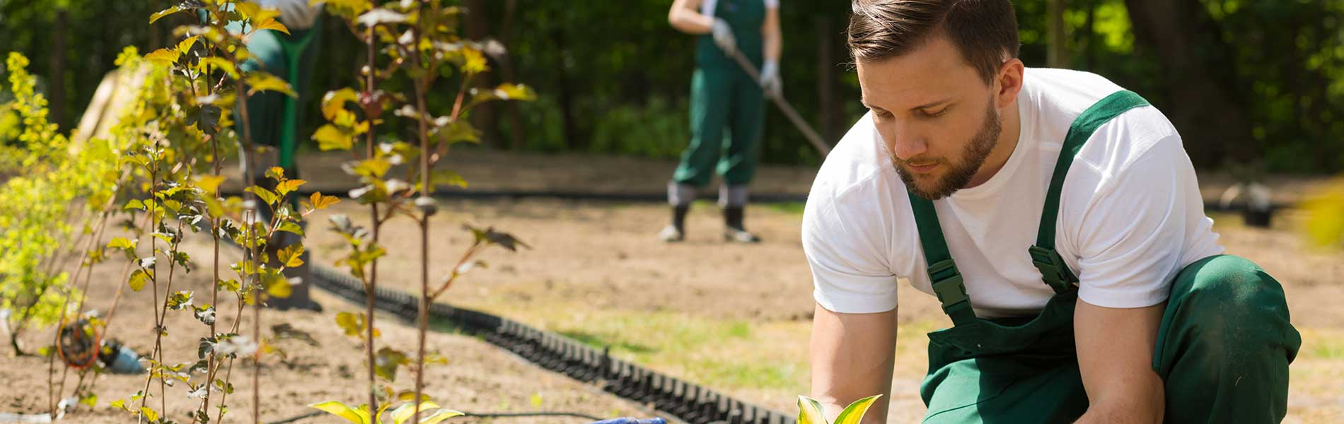 entreprise-jardinier-paysagiste-expert