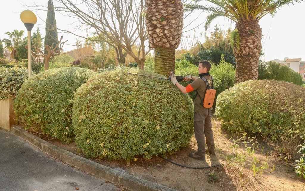 entretien-jardin-aix-en-provence-13