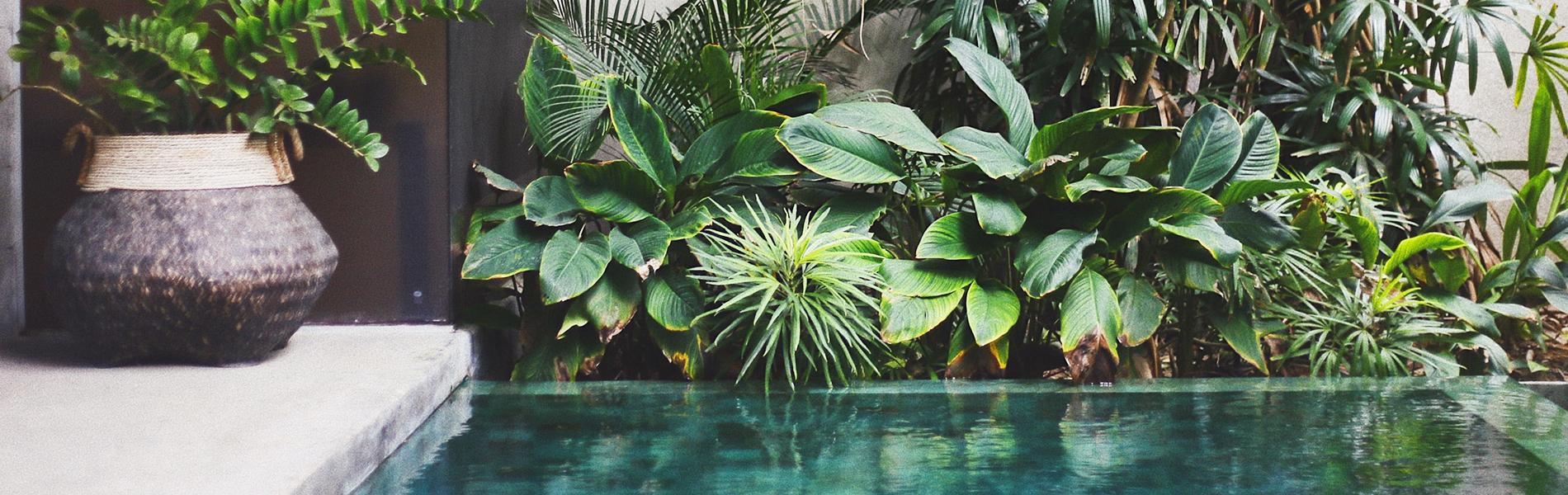 creation-jardin-zen-mineral-jardinier-paysagiste