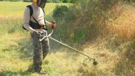 Débroussaillage de terrain ou jardin: un acte essentiel dans le Var 83 et les Bouches du Rhône