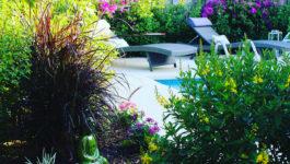 Création de jardin: quel style de jardin privilégier pour un aménagement paysager dans le Var et les Bouches du Rhône ?