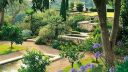 La création du jardin méditerranéen contemporain