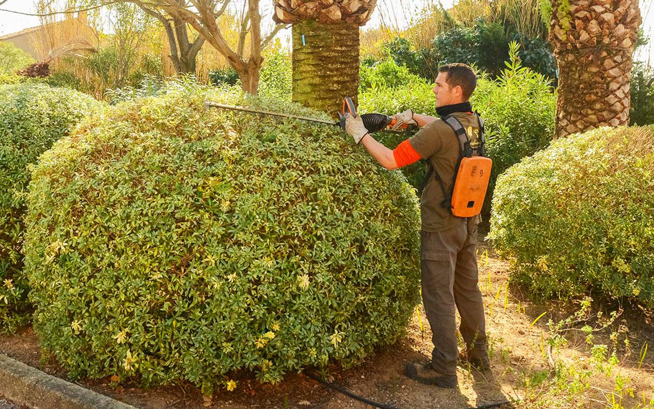 entretien-jardin-en-ete-jardinier-Hyeres-Var-83